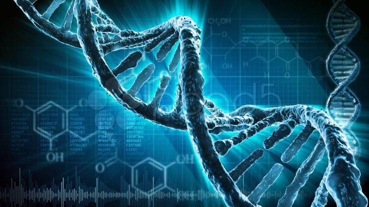 DNA ED EPIGENETICA